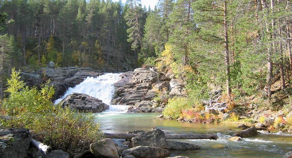 Metsa maisema kuvan keskellä virtaa joki