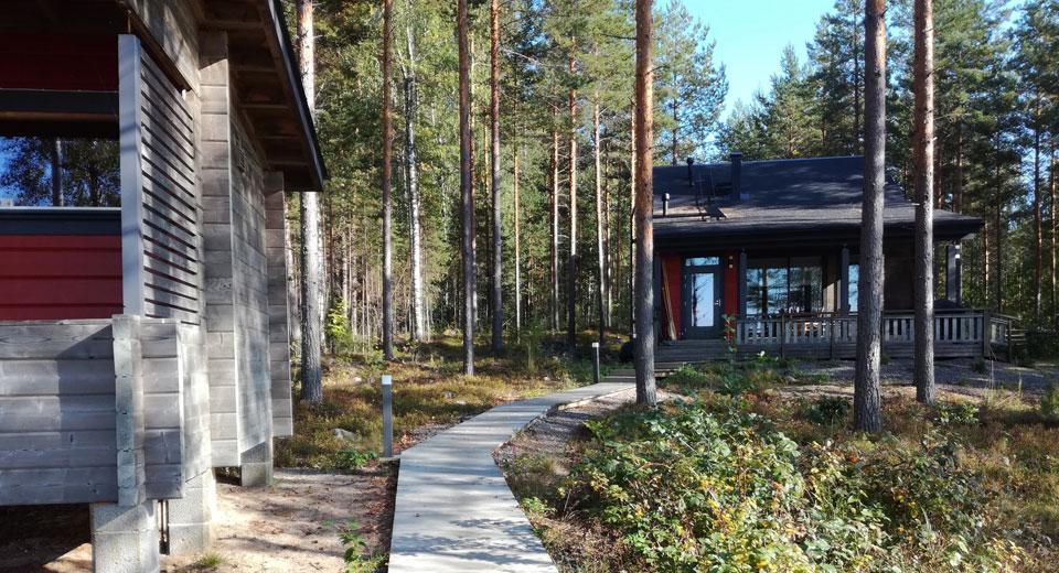 Villa Hauki, mökin piha-aluetta