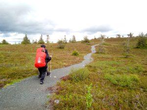 Kaksi vaeltajaa (näkövammainen ja opas) tunturimaisemassa. Kuva: Seikkailuapinat